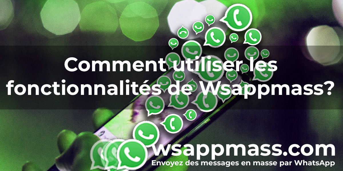 Fonctions Wsappmass